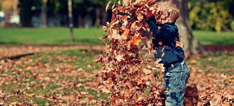 stay active_little boy throwing leaves