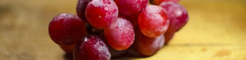 2 ingredient snacks-grapes