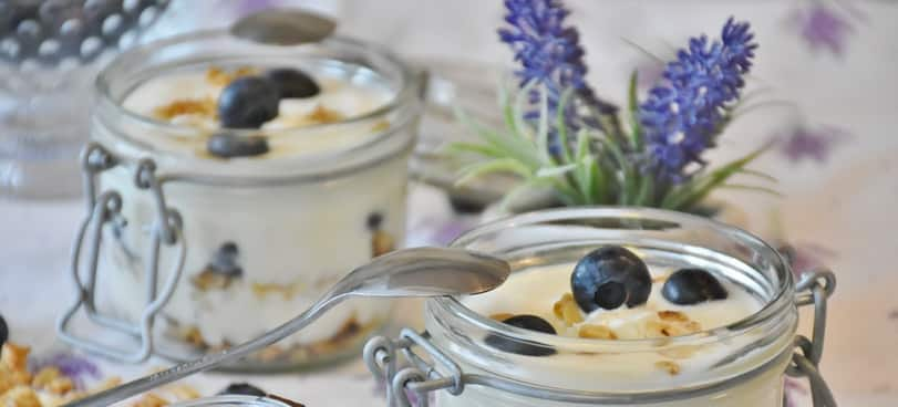 best foods to eat before bed for weight loss yogurt